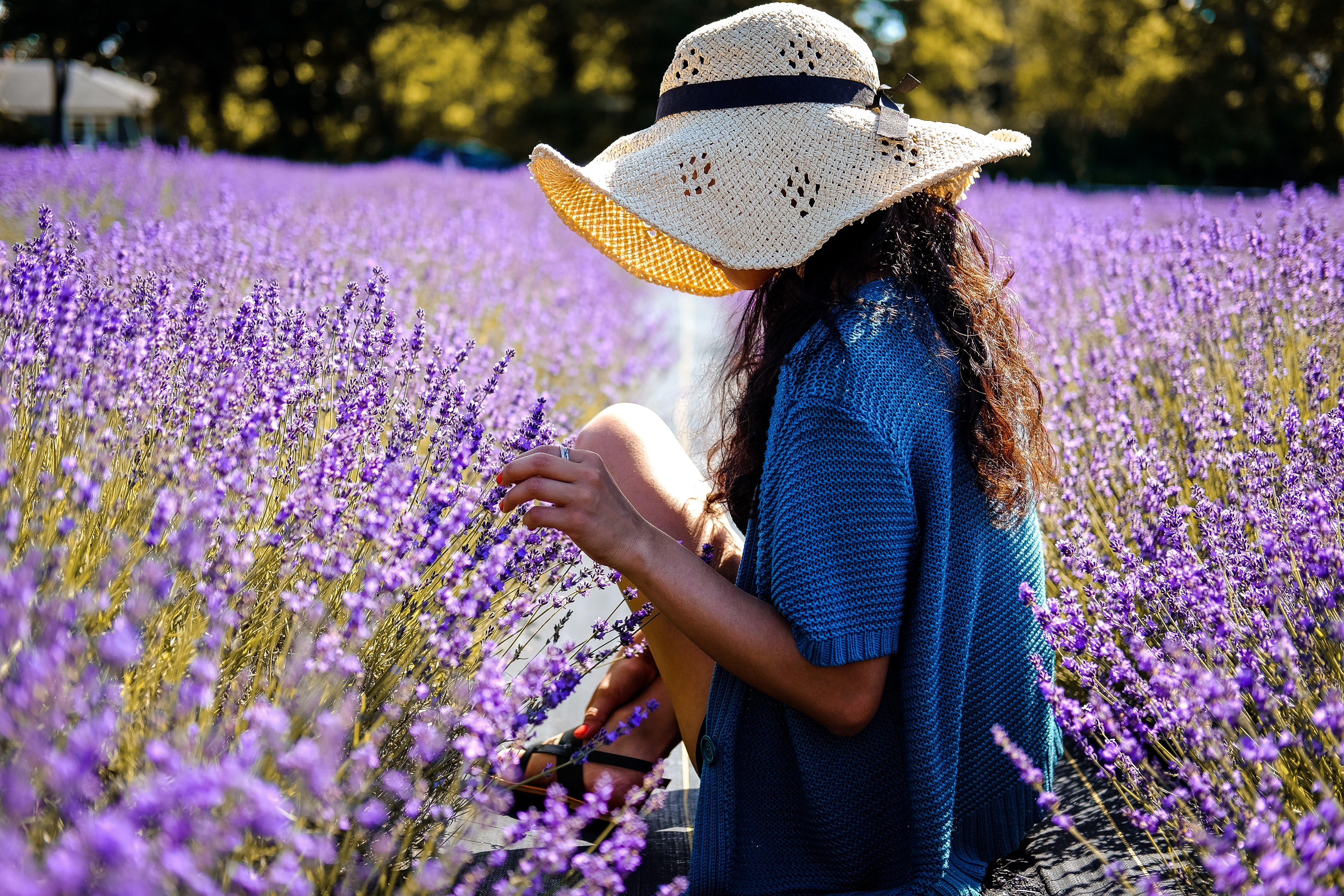 Image of a woman in a hat in a lavender field, courtesy Frank Marino